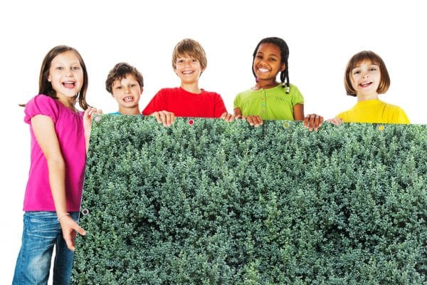 myfence Sichtschutz Buxi mit Kindern