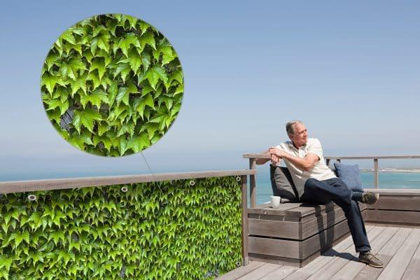 myfence Sichtschutz Vino Anwendung Terrasse